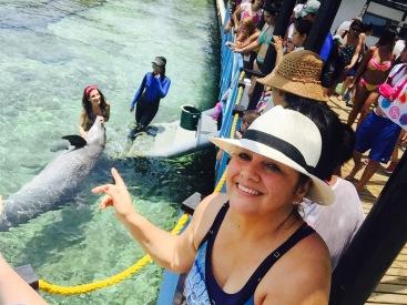 Tambien se puede nadar con delfines